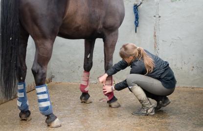 Cours équitation Cuges-les-Pins